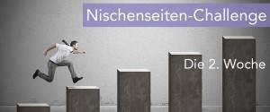 nischenseiten-challenge-woche2